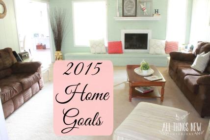 2015 home goals